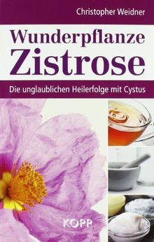Wunderpflanze Zistrose: Die unglaublichen Heilerfolge mit Cystus