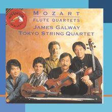 Mozart: Flötenquartette