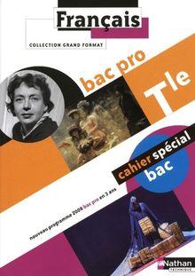Français Tle Bac pro : Programme 2009