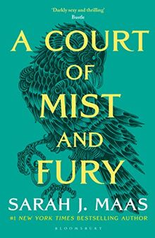 A Court of Mist and Fury (A Court of Thorns and Roses, Band 9)