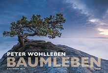 Baumleben: Kalender 2019 - Wandkalender