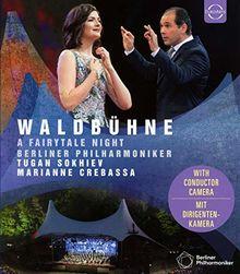 Berliner Philharmoniker Waldbühne 2019 [Blu-ray]