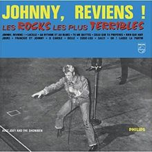 Les Rocks les Plus (Vinyl) [Vinyl LP]