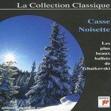 Couleur/Casse-Noisette