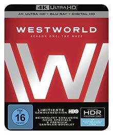 Westworld Staffel 1: Das Labyrinth (4K Ultra HD + 2D-Blu-ray) (6-Disc Version)