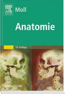Anatomie. Kurzlehrbuch zum Gegenstandskatalog 1