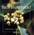 Bach-Blütenbilder: Harmonisierung - Zentrierung - Meditation