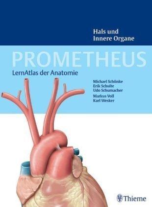 PROMETHEUS Lernatlas der Anatomie. Hals und Innere Organe von ...