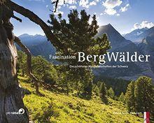 Faszination Bergwälder - Die schönsten Waldlandschaften der Schweiz