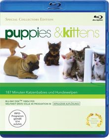 Puppies & Kittens - Hunde und Katzen [Blu-ray] [Special Collector's Edition] [Special Edition]