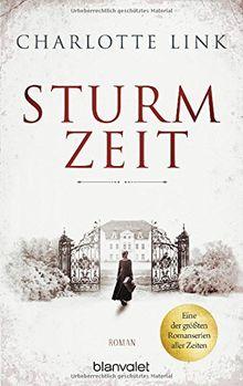 Sturmzeit: Roman (Die Sturmzeittrilogie, Band 1)