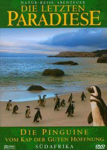 Die letzten Paradiese (Teil 30) - Die Pinguine vom Kap der guten Hoffnung