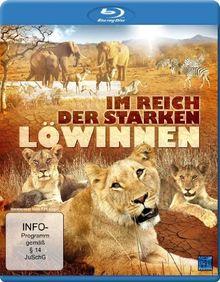 Im Reich der starken Löwinnen [Blu-ray]