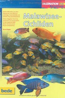 Malawisee-Cichliden, Faszination