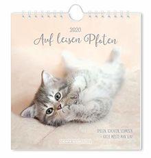 """Postkartenkalender 2020 """"Auf leisen Pfoten"""""""
