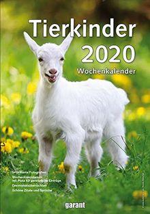 Wochenkalender Tierkinder 2020